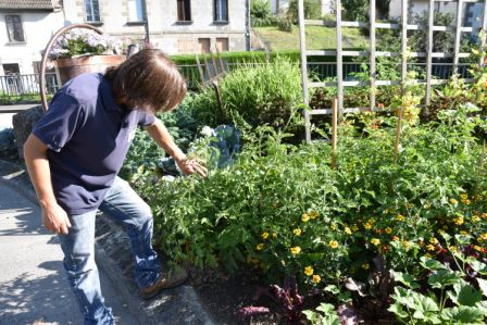 Le jardin potager avec JB